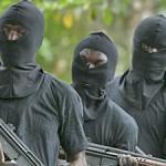 Niger Delta militants 3