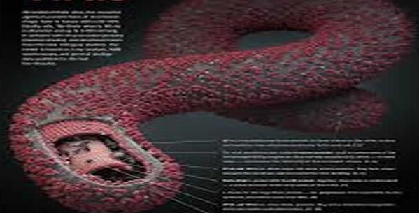 Ebola-Virus-Disease-e1406219161689.jpg