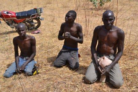 Niger Air Force bombs Boko Haram base, arrests 20 militants – The