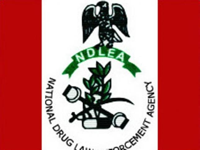 National-Drug-Law-Enforcement-Agency-NDLEA.jpg