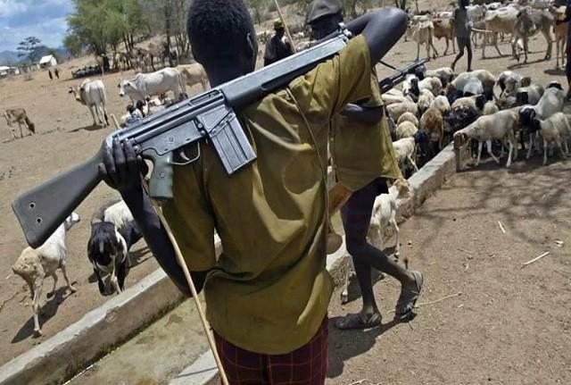Armed-Fulani-herdsmen.jpg