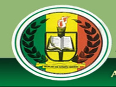 Youth Council berates Niger government over Nigeria Peace Corps