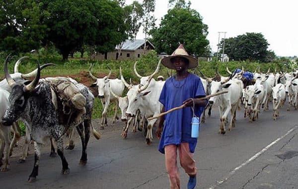 Fulani-herdsmen.jpg