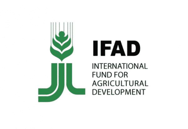 IFAD-e1498344886765.png