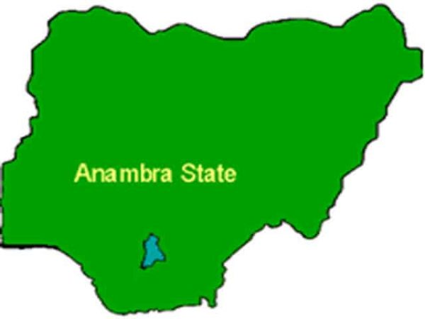 Image result for Anambra State coordinator