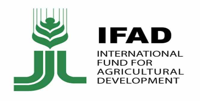 IFAD-International-Fund-for-Agricultural-Development.jpg
