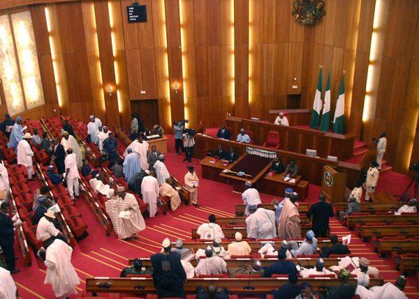 Bildergebnis für senator obinna ogba senate floor