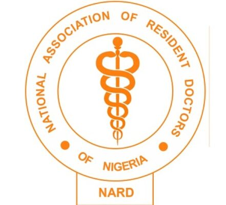 Resident Doctors call off strike in Gombe - - The Eagle Online