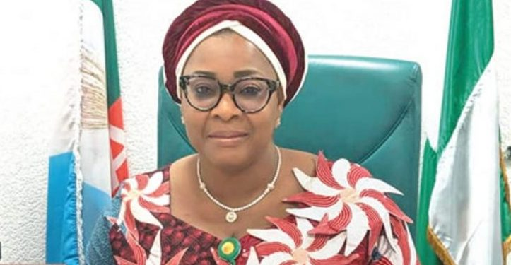 Despite huge remittances by Nigerians abroad, impact low on economy —Rep